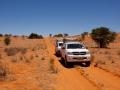 Kalahari-meets-Etosha-54
