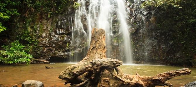 Lava tubes, wildlife, waterfalls and rainforest…