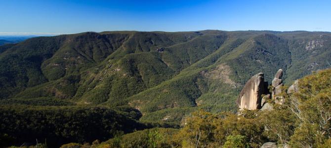 Gibraltar Range NP & Guy Fawkes River NP