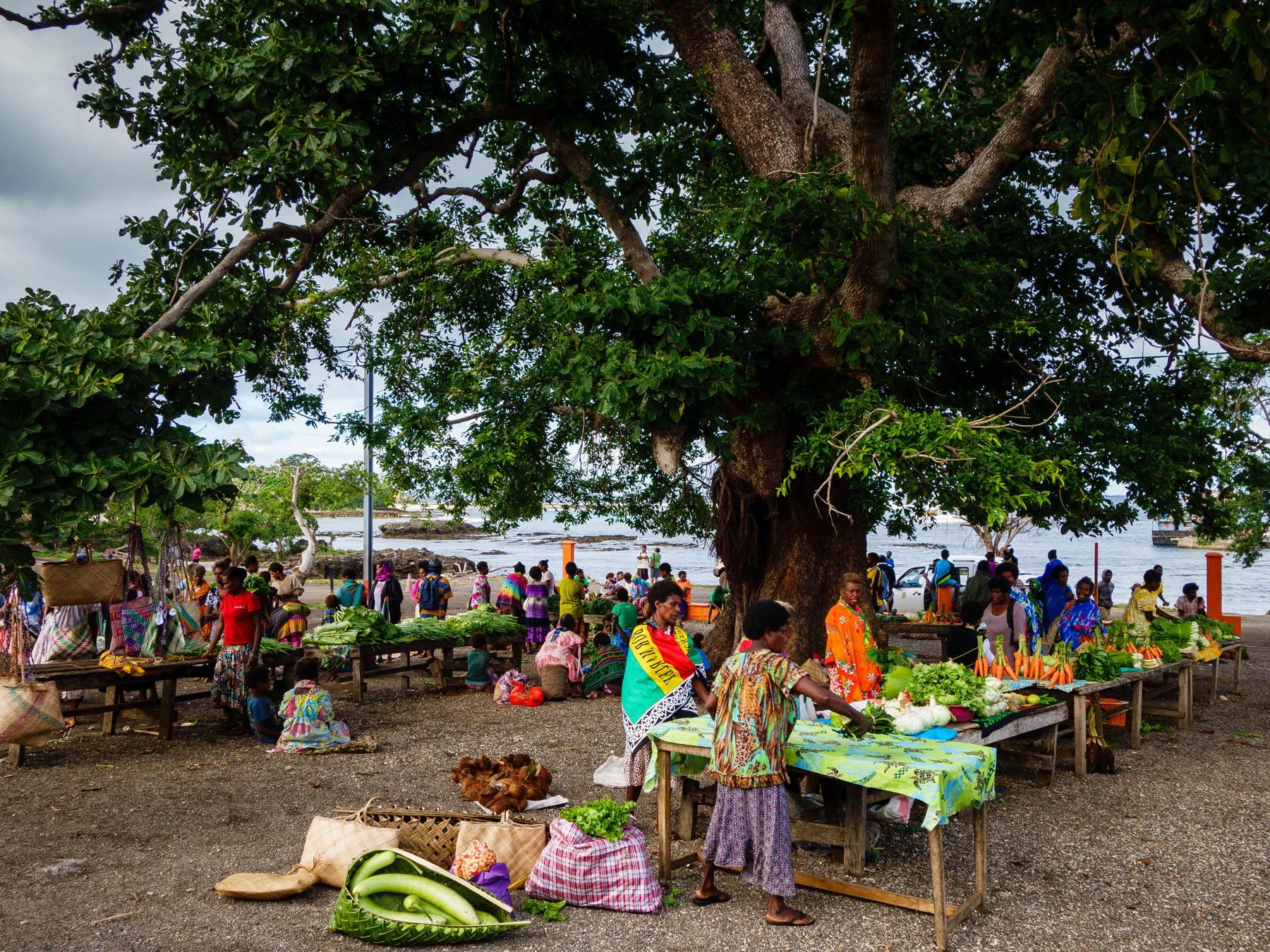 Blog-54-Vanuatu-8