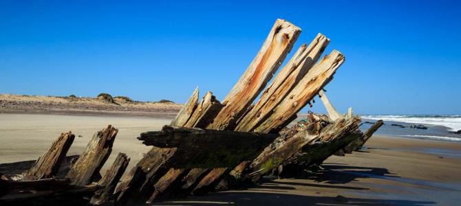Seals & wrecks at the Skeleton Coast